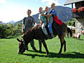 Holiday on Perhinig Farm - Donkey Ride
